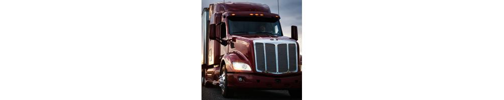 Anticongelante refrigerante aceite motor y grasa lubricante camión