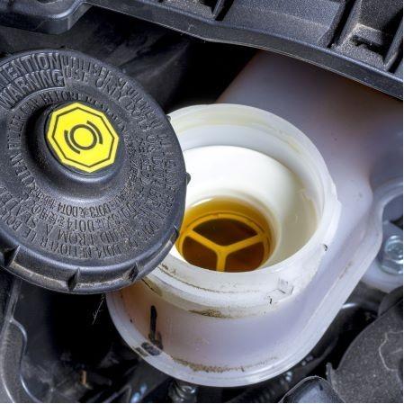 Brake Fluid & Clutch